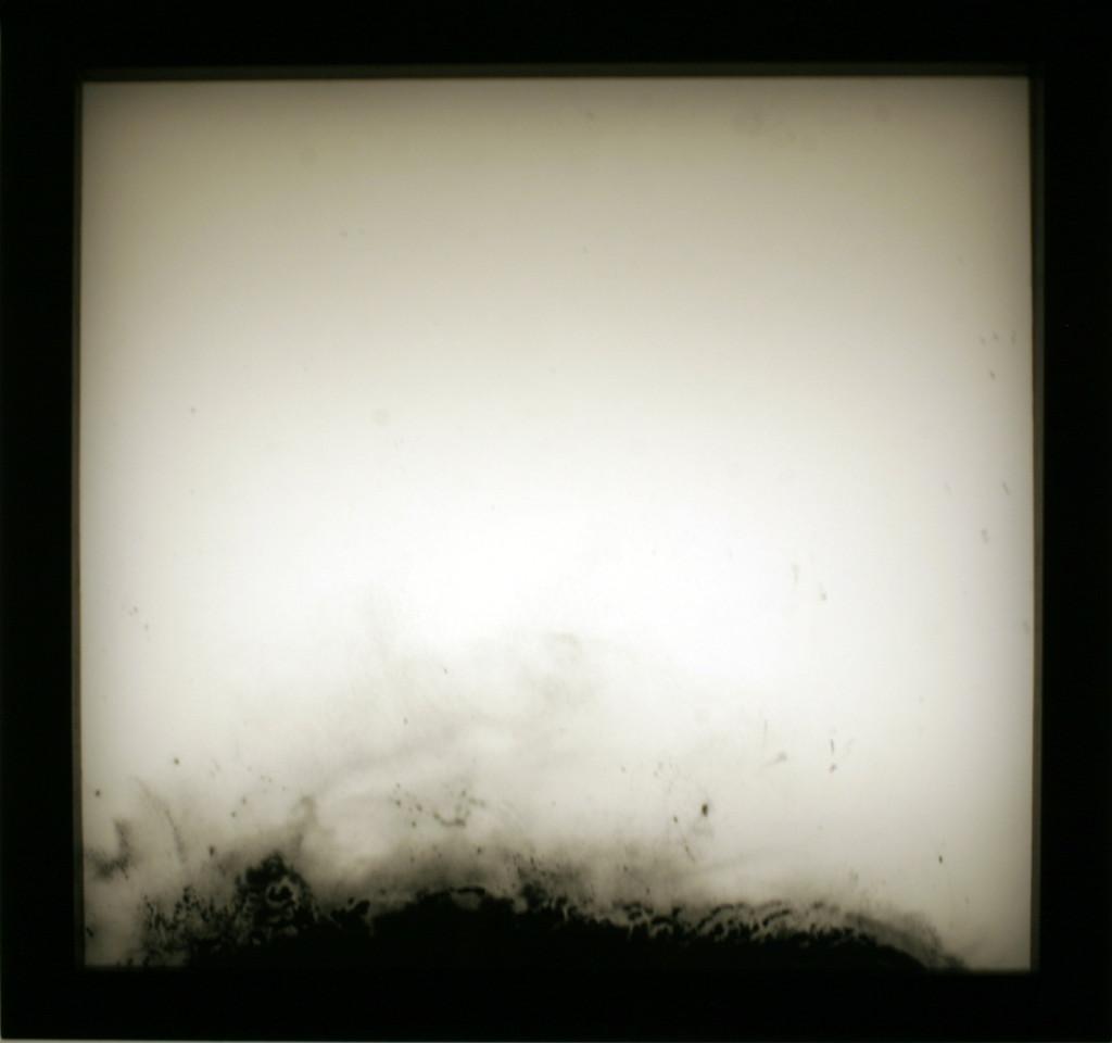 Transparant landskap